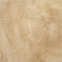 PROVENZA W-AGE HEARTWOOD BEIGE LUCIDATO GAT.2 60X60 60653P